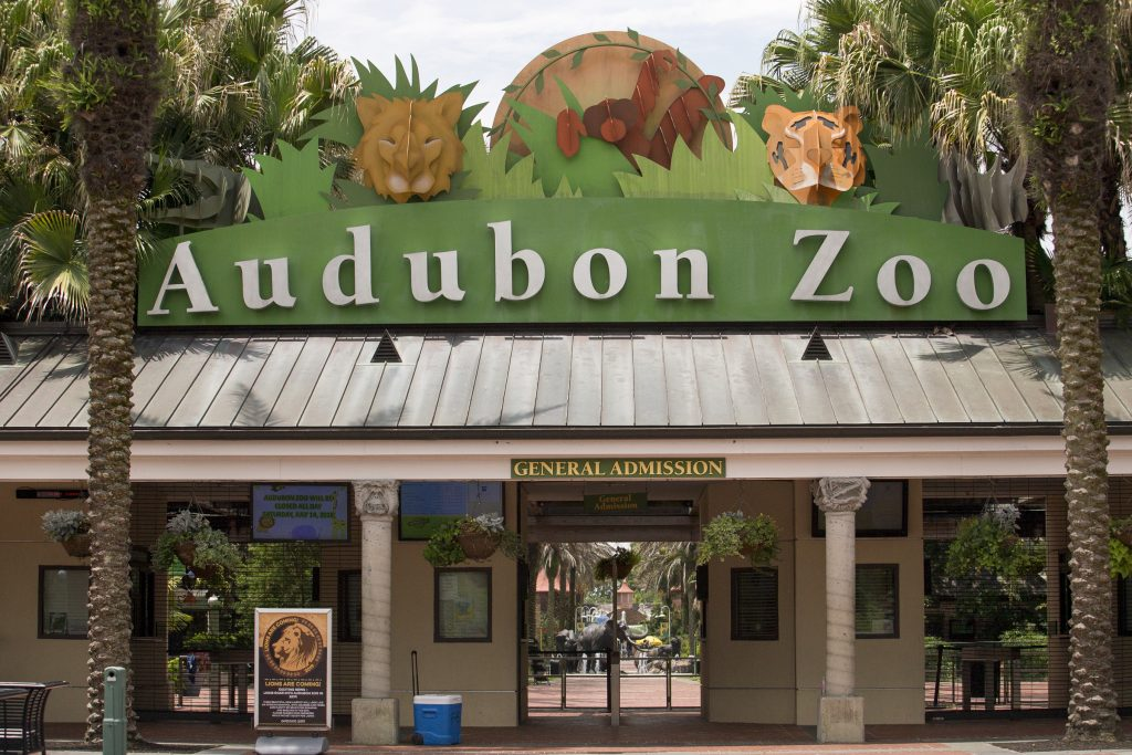 jaguar zoo